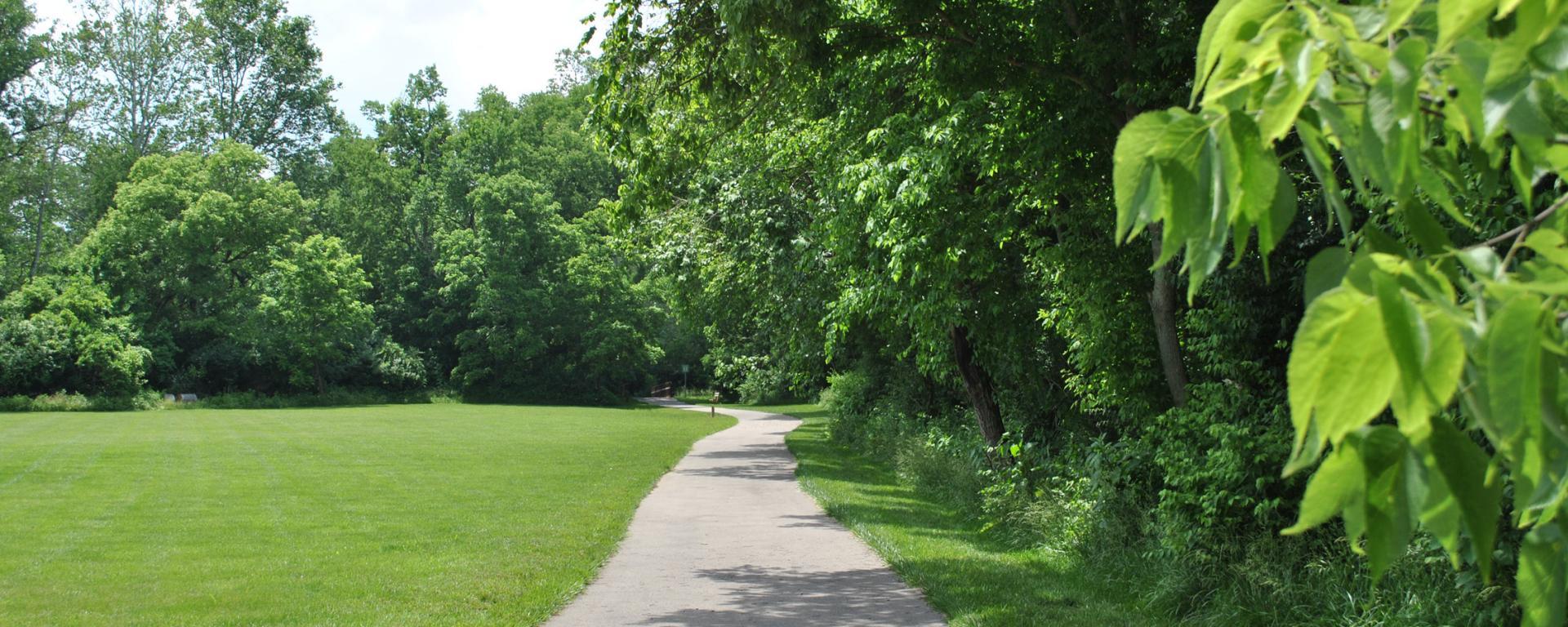 scenic park trail