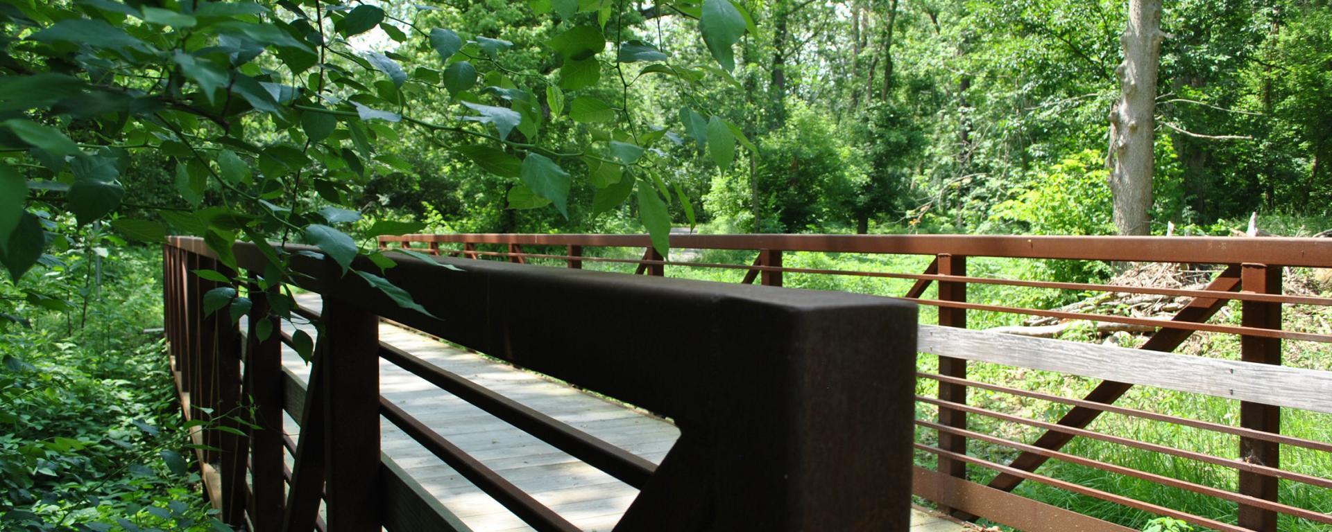 bridge along park trail